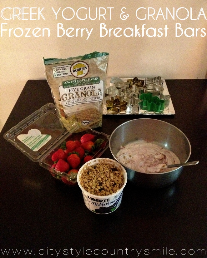 frozen yogurt breakfast bars